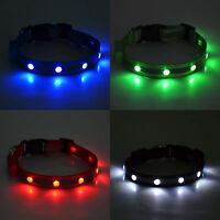 LED Light Jewel-Pet Dog Leash Neck Collar-visible up to 1/4 mile-4 Flash Modes