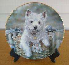 Hitching A Ride West Highland Terriers By Paul Doyle Danbury Mint Plate