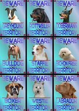 Beware Of The Dog Signs Territory Various Breeds Set A