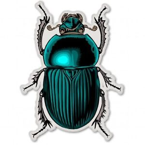 Beetle Bug Insect Nature Science Car Vinyl Sticker - SELECT SIZE