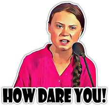 How Dare You! Greta Thunberg Activist Vinyl Sticker Decal Car Laptop Window Wall