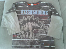 Boys 5 Years - Brown Striped Long Sleeved Top - Stegosaurus Dinosaur Motif
