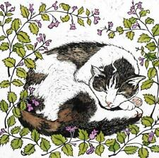 Harry & Catmint - Fine Art  Blank Greeting / Birthday Card - Tabby & White Cat