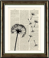 Old Antique Book page Art Print - Dandelion Seed head - Dictionary Page Wall Art