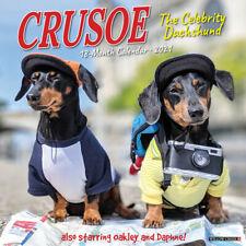 Crusoe the Celebrity Dach(dog breed calendar) 2021 Wall Calendar (Free Shipping)