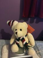 White teddy bear with scarf and beanie- calvin
