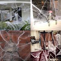 90g HALLOWEEN SPIDER WEB WEBBING 10 SPIDERS COBWEB COB WEBS SCENE DECORATION