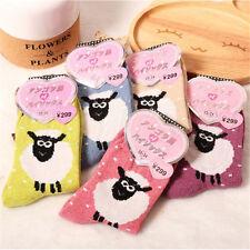 1 Pair Women Winter Rabbit Wool Socks Alpaca Sheep Thick Socks Random New