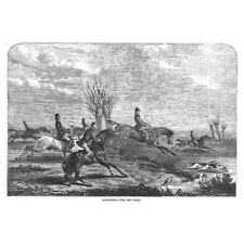 Victorian Fox Hunting Scene - Antique Print 1855