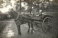 Reading. Barnard & Co Horse Delivery Cart during Election.