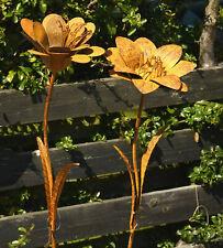 Agapanthus D30cm H130cm Pusteblume Edelrost Rost Gartenstecker Allium Blume