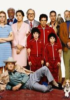 THE ROYAL TENENBAUMS Movie PHOTO Print POSTER Textless Film Art Wes Anderson 001