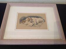 Lucy Dawson 1936 Chien & Chiot Terrier photographie couleur encadrée