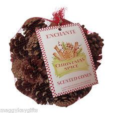 Enchante Christmas Spice Scented Pine Cones - Cinnamon - Festive - Fragrance