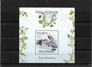 Briefmarken -Mosambik -Vogel -Block  -2010