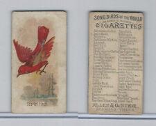 N23 Allen & Ginter, Song Birds of the World, 1890, Scarlet Finch