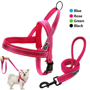 Reflective Nylon No Pull Dog Harness with Leash Set Puppy Large Dog Walking Vest
