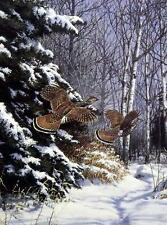 "Richard Plasschaert ""Ruffed Grouse""  Print   7"" x 10"""