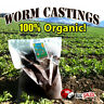 Earthworm Castings 10 Pounds- 100% Organic- Natures Soil Amendment for Indoors