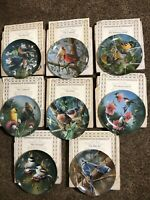 Birds Of Your Garden by Kevin Daniel Knowles Collector Plates Full Set Of 8 NEW