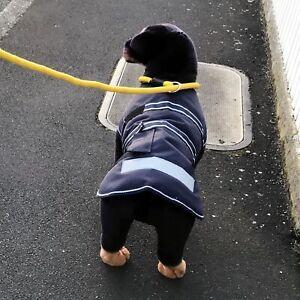 SLIP-ON DOG LEAD ROUND BRAIDED POLYPROPYLENE, FOR MEDIUM, LARGE & XL SIZE DOGS