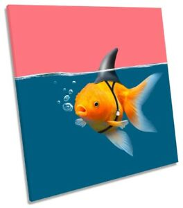 Goldfish Shark Fin Bathroom Print CANVAS WALL ART Square Picture Pink