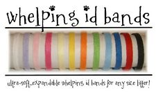 Breeding Litter Collar Whelping Id Band 6 Pk PASTEL Puppy Kitten Fleece 6 COLORS