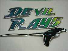 AWESOME TAMPA BAY RAYS JERSEY IRON ON PATCH