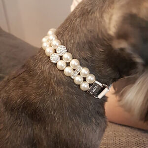 Pet Puppy Small Dog Jewellery Necklace Party Rhinestone Diamante Pearls Collar L