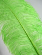 """3 LIME GREEN Ostrich FEATHERS 18-23"""" Full Wing PLUMES Bridal/Wedding/Centerpiece"""