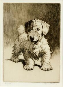 Framed Print - Cecil Aldin Terrier Etching Signed Limited Edition (Picture Art)