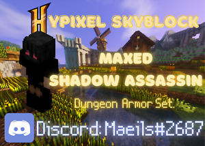 Hypixel Skyblock Maxed Shadow Assassin Armor  ✅ Cheap. Fast Delivery, & Secure!