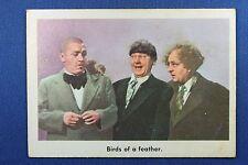 1959 Fleer - 3 Stooges - #34 Birds of a feather. - Ex-Mt