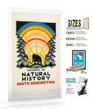 Paper Natural History Art Prints