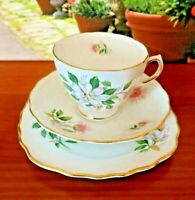 Royal Vale Pale Pink & White Wild Floral Decorated Tea Set Trio