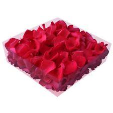 Echte konservierte Rosenblätter - Streukörbchen Hochzeit Tischdeko - fuchsia