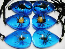 12pcs wholesale fine insect black scorpion spider angle spider blue mix pendants