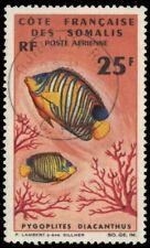 """SOMALI COAST C43 (Mi378) - Regal Angelfish """"Pygoplites diacanthus"""" (pa64139)"""