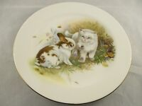 Hornsea Pottery Country Scene Plate - Cute Rabbit & Kitten Design  Display Item