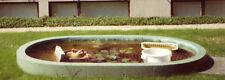 Gartenteich Fischteich Fischbassin Fischbecken Pflanzbeet Seerosenteich
