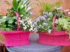 Beautiful Wicker/willow Basket Flower Basket,Gift Basket,Planter Basket Florist