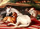 "Edwin Landseer CANVAS PRINT Famous Painting Arab Tent horse poster 16""X12"""