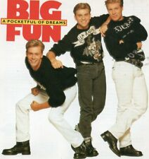 BIG FUN - A POCKETFUL OF DREAMS   *RARE 1990 CD ALBUM*  BLAME IT ON THE BOOGIE