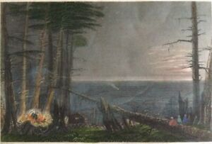 """Original 1838 W H Bartlett Hand Colored ENGRAVING  """"A Forest On Lake Ontario."""""""