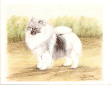 Keeshond Limited Edition Art Print by Usa Artist Barbara Walker