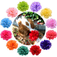 Pet Puppy Dog Cat Collar Accessories Polka Dots Flower Charms for Party Wedding