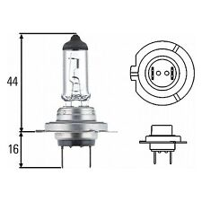 Light Bulb - Headlight / Fog Light: H7 Blue Bulb 12v 55W | HELLA 8GH 007 157-181