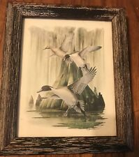 Vintage Print Richard Shaw 3 Geese Coming In For A Landing On Water Framed South
