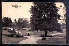 AUSTRALIA ADELAIDE Pennington Park English Elm PC c1907