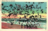 Vintage Postcard - Linen - Dinner-Time For The Gulls - Birds Feeding  #1936